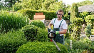 Interjú a kertésszel